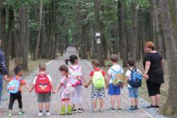Învățare prin joc și explorare în natură